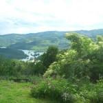 Vista panoramica dall'Agriturismo